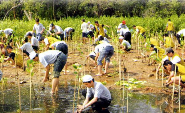 http://environmentalsanitation.files.wordpress.com/2012/11/5329_103576987709_88437252709_1983633_6848586_n.jpg