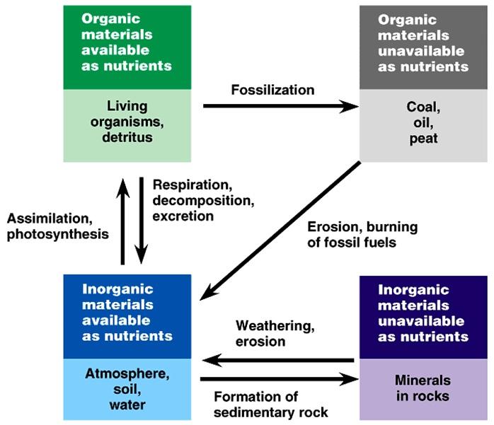 Siklus biogeokimia environmental sanitations journal atmosfer laut air tawar batu tanah dan organisme hidup masing masing dapat dianggap sebagai sebuah kolam untuk menyimpan senyawa ini ccuart Image collections